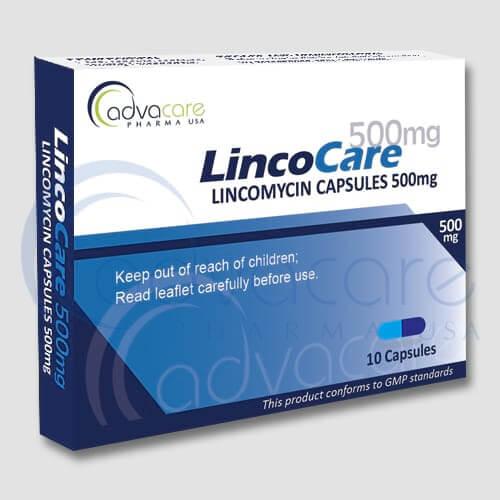 Capsules de Lincomycine