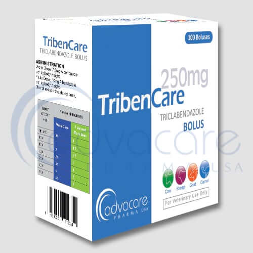 Triclabendazole Tablets & Boluses Manufacturer 2