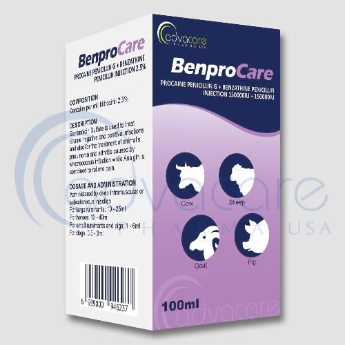 Procaine Penicillin G + Benzathine Penicillin Injections