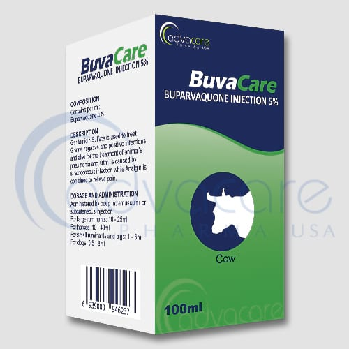 Buparvaquone Injections